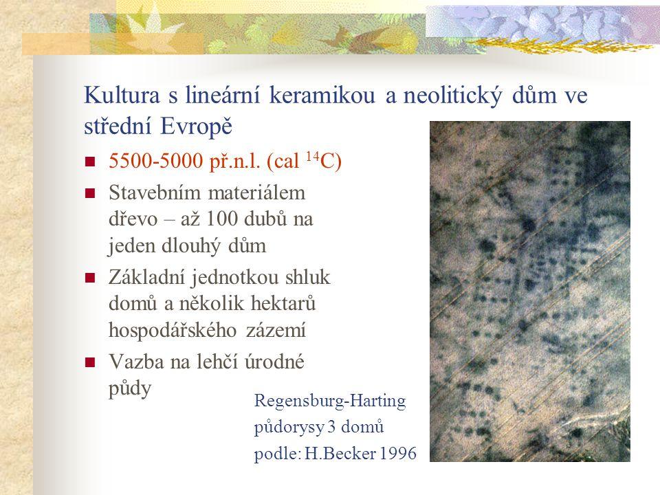 Kultura s lineární keramikou a neolitický dům ve střední Evropě 5500-5000 př.n.l. (cal 14 C) Stavebním materiálem dřevo – až 100 dubů na jeden dlouhý