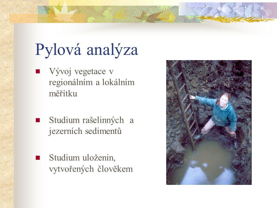 Pylová analýza Vývoj vegetace v regionálním a lokálním měřítku Studium rašelinných a jezerních sedimentů Studium uloženin, vytvořených člověkem