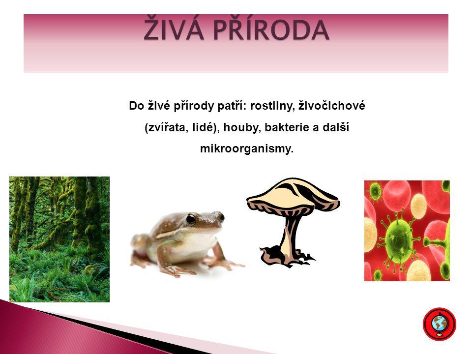ŽIVÁ PŘÍRODA Do živé přírody patří: rostliny, živočichové (zvířata, lidé), houby, bakterie a další mikroorganismy.