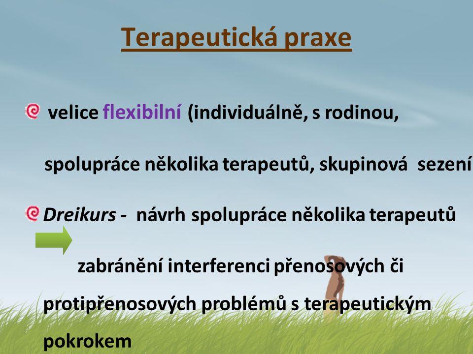 Terapeutická praxe velice flexibilní (individuálně, s rodinou, spolupráce několika terapeutů, skupinová sezení) Dreikurs - návrh spolupráce několika t