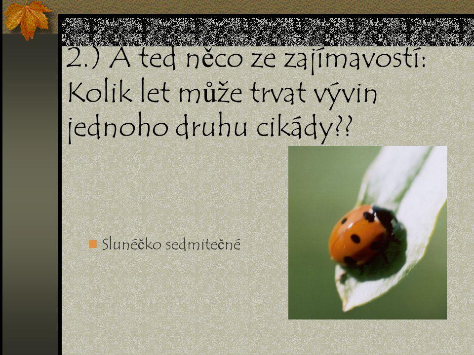 2.) A ted něco ze zajímavostí: Kolik let může trvat vývin jednoho druhu cikády?? Slunéčko sedmitečné