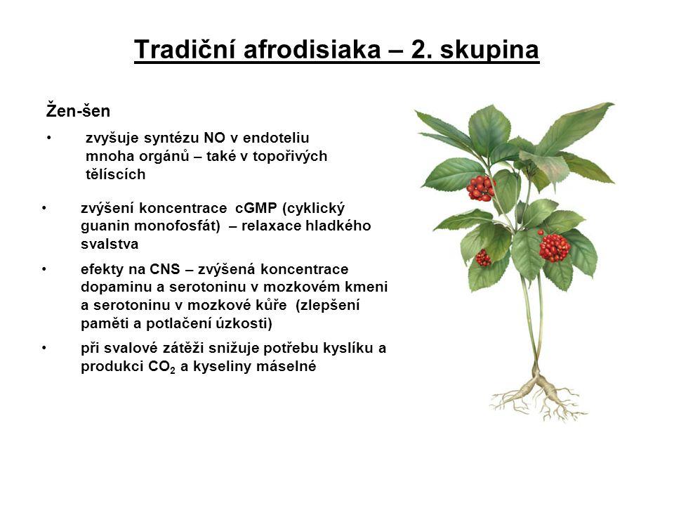Tradiční afrodisiaka – 2. skupina Žen-šen zvyšuje syntézu NO v endoteliu mnoha orgánů – také v topořivých tělíscích zvýšení koncentrace cGMP (cyklický