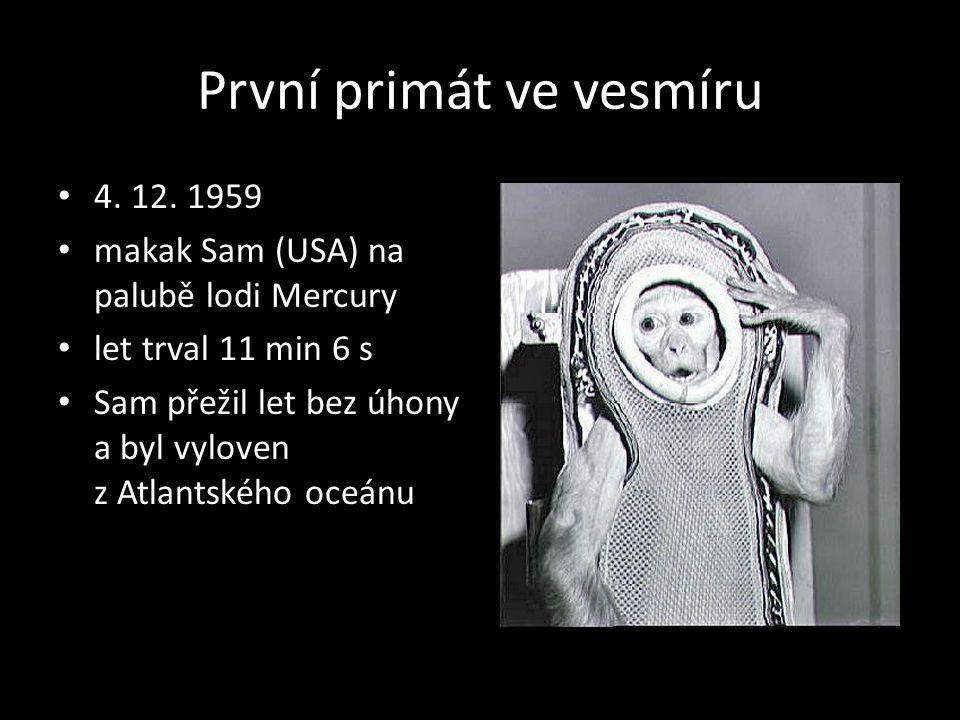 První primát ve vesmíru 4. 12. 1959 makak Sam (USA) na palubě lodi Mercury let trval 11 min 6 s Sam přežil let bez úhony a byl vyloven z Atlantského o