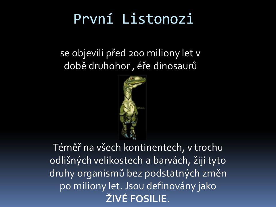 První Listonozi se objevili před 200 miliony let v době druhohor, éře dinosaurů Téměř na všech kontinentech, v trochu odlišných velikostech a barvách,