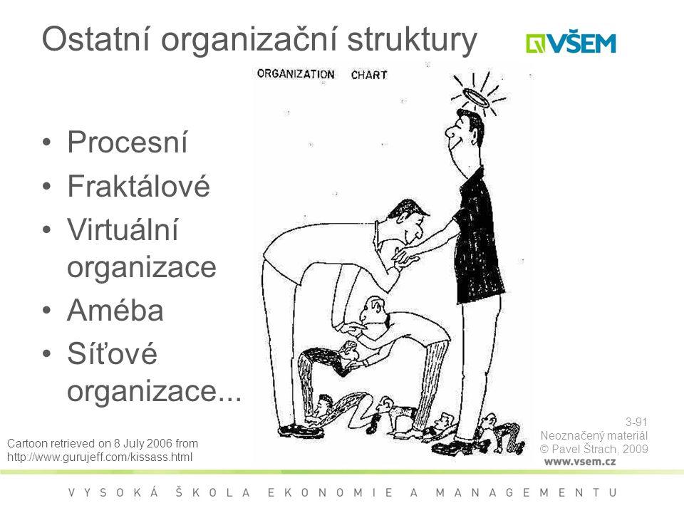 Ostatní organizační struktury Procesní Fraktálové Virtuální organizace Améba Síťové organizace...