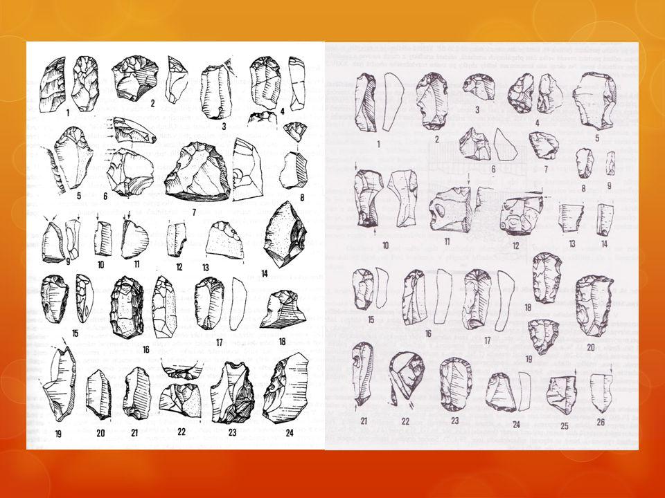Stránská skála (Brno – Slatina)  Aurignacké artefakty uloženy většinou v horní fosilní půdě nad vrstvami bohunicienu na lokalitách Stránská skála II,