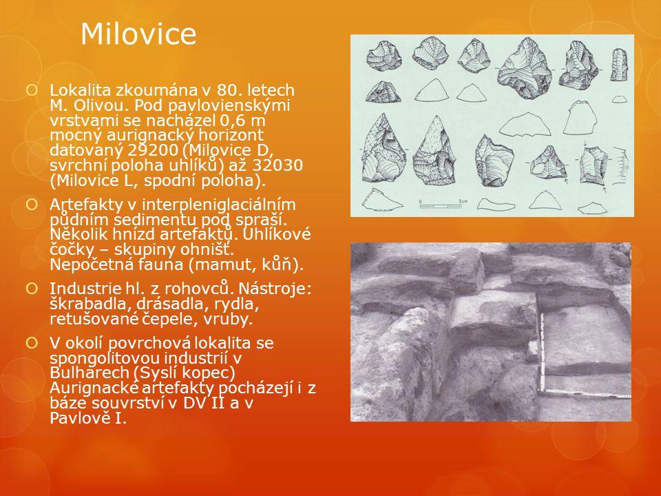 Milovice  Lokalita zkoumána v 80. letech M. Olivou. Pod pavlovienskými vrstvami se nacházel 0,6 m mocný aurignacký horizont datovaný 29200 (Milovice