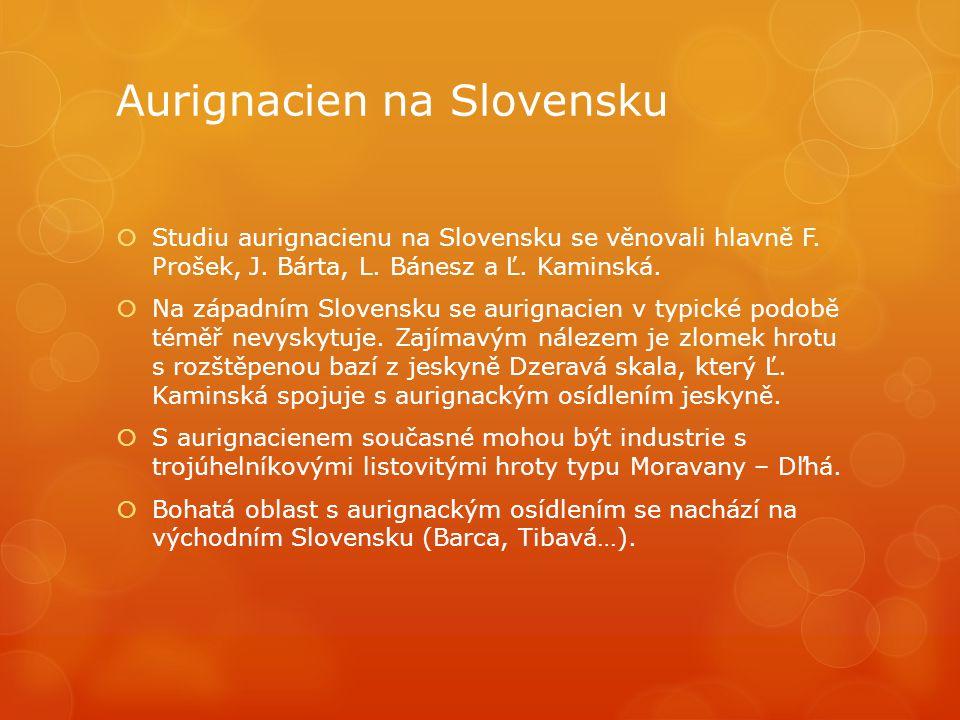 Aurignacien na Slovensku  Studiu aurignacienu na Slovensku se věnovali hlavně F. Prošek, J. Bárta, L. Bánesz a Ľ. Kaminská.  Na západním Slovensku s