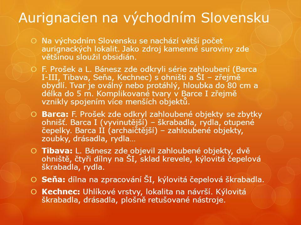 Aurignacien na východním Slovensku  Na východním Slovensku se nachází větší počet aurignackých lokalit. Jako zdroj kamenné suroviny zde většinou slou