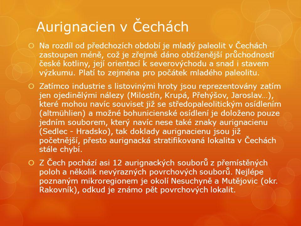 Aurignacien v Čechách  Na rozdíl od předchozích období je mladý paleolit v Čechách zastoupen méně, což je zřejmě dáno obtíženější průchodností české