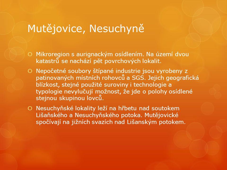 Mutějovice, Nesuchyně  Mikroregion s aurignackým osídlením. Na území dvou katastrů se nachází pět povrchových lokalit.  Nepočetné soubory štípané in