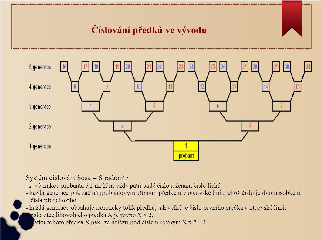 Číslování předků ve vývodu Systém číslování Sosa – Stradonitz - s výjimkou probanta č.1 mužům vždy patří sudé číslo a ženám číslo liché - každá generace pak začíná probantovým přímým předkem v otcovské linii, jehož číslo je dvojnásobkem čísla předchozího.