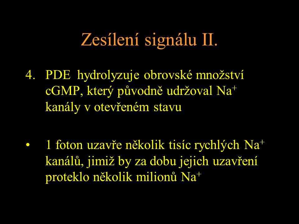 Zesílení signálu II.
