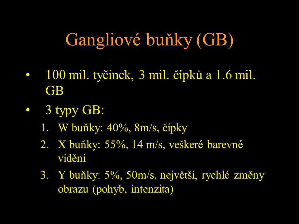 Gangliové buňky (GB) 100 mil. tyčinek, 3 mil. čípků a 1.6 mil. GB 3 typy GB: 1.W buňky: 40%, 8m/s, čípky 2.X buňky: 55%, 14 m/s, veškeré barevné viděn
