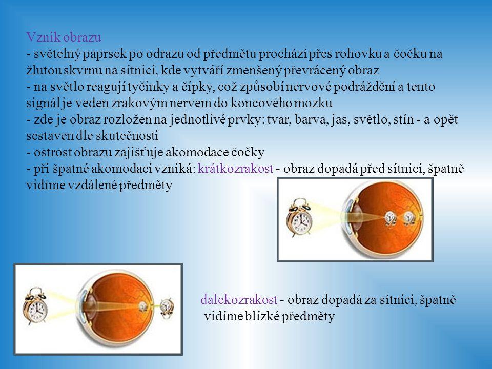 Zdroje obrázků: http://www.optika-safarikova.cz/images/content/oko_schema_v.jpg http://t2.gstatic.com/images?q=tbn:ANd9GcQFIAbmRIdnXRv0mj0RN6j6n- EIpnTPL3fSXKNpVApZj6EzcXeLfg http://t2.gstatic.com/images?q=tbn:ANd9GcQFIAbmRIdnXRv0mj0RN6j6n- EIpnTPL3fSXKNpVApZj6EzcXeLfg http://www.theretinaclinic.com/info_clip_image002.jpg http://fyzika.jreichl.com/data/optika/32_oko_soubory/image002.jpg http://fyzika.jreichl.com/data/optika/32_oko_soubory/image003.jpg http://tpe.illusion-optique.notre-espace.re/local/cache- vignettes/L496xH358/cristallin-84f29.jpg http://tpe.illusion-optique.notre-espace.re/local/cache- vignettes/L496xH358/cristallin-84f29.jpg http://www.glaucoma-eye-info.com/images/crystalline-lens.jpg http://www.wikiskripta.eu/images/7/75/Akomodace_-_sch%C3%A9ma.png http://upload.wikimedia.org/wikipedia/commons/thumb/a/a9/Spojivka_schem a-800x800.gif/250px-Spojivka_schema-800x800.gif http://upload.wikimedia.org/wikipedia/commons/thumb/a/a9/Spojivka_schem a-800x800.gif/250px-Spojivka_schema-800x800.gif http://www.vondyho-maseri.estranky.cz/img/original/183/12slzny-aparat1.jpg http://skolajecna.cz/biologie/Images/Textbook/Medium/0110000/00186.png http://www.kaitseomatervist.ee/img/silmalihased.jpg http://skolajecna.cz/biologie/Images/Textbook/Big/0110000/00175.png http://www.optika- rozehnalova.cz/img220x120_Kratkozrakost_download_mf26.jpg http://www.optika- rozehnalova.cz/img220x120_Kratkozrakost_download_mf26.jpg http://www.optika- rozehnalova.cz/img220x120_Dalekozrakost_download_mf27.jpg http://www.optika- rozehnalova.cz/img220x120_Dalekozrakost_download_mf27.jpg