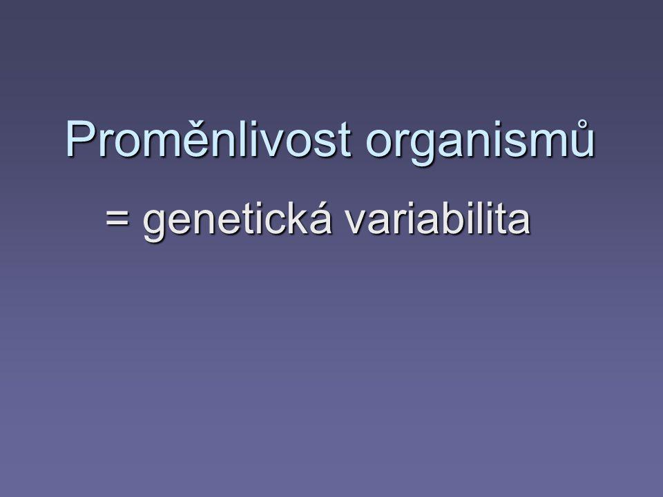 Faktory vedoucí k variabilitě organismů  Vnitřní proměnlivost genotypu  Vnější proměnlivost fenotypu = faktory prostředí