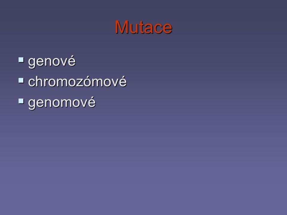 Genové mutace  zasahují pouze geny  ztráta nukleotidu  příjem nukleotidu  záměna nukleotidu  projeví se jako změna kodonu  jiná aminokyselina  jiná bílkovina