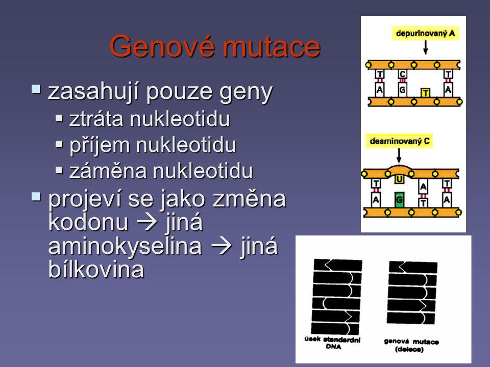 Chemická modifikace nukleotidů dává vznik mutacím © Espero Publishing, s.r.o.