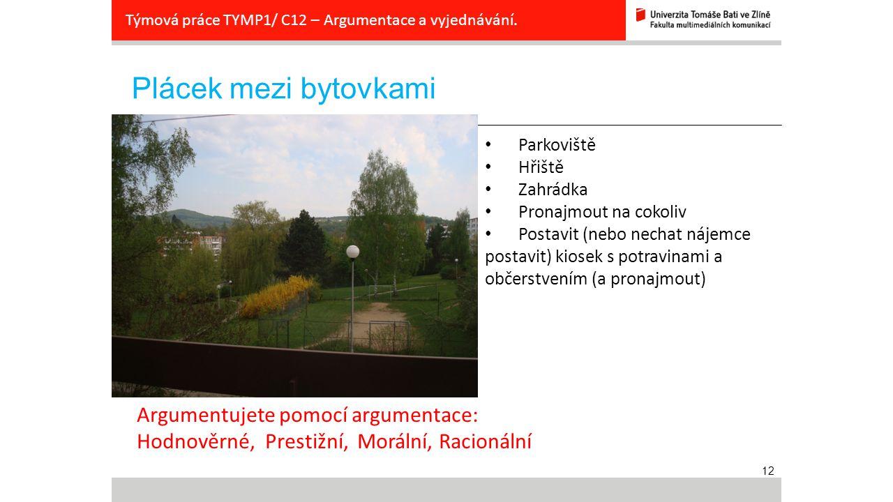 12 Plácek mezi bytovkami Týmová práce TYMP1/ C12 – Argumentace a vyjednávání. zadání Parkoviště Hřiště Zahrádka Pronajmout na cokoliv Postavit (nebo n