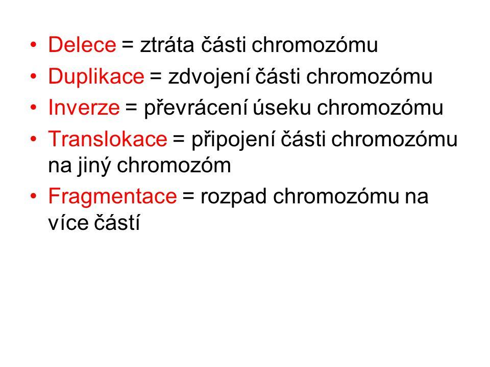 Delece = ztráta části chromozómu Duplikace = zdvojení části chromozómu Inverze = převrácení úseku chromozómu Translokace = připojení části chromozómu