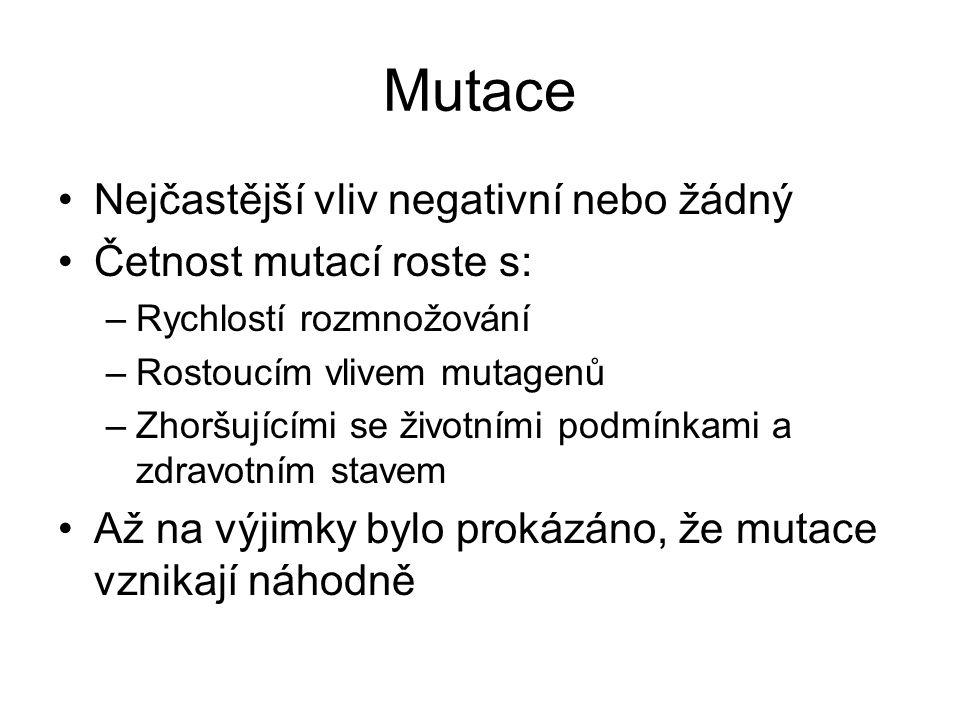 Mutace Nejčastější vliv negativní nebo žádný Četnost mutací roste s: –Rychlostí rozmnožování –Rostoucím vlivem mutagenů –Zhoršujícími se životními pod