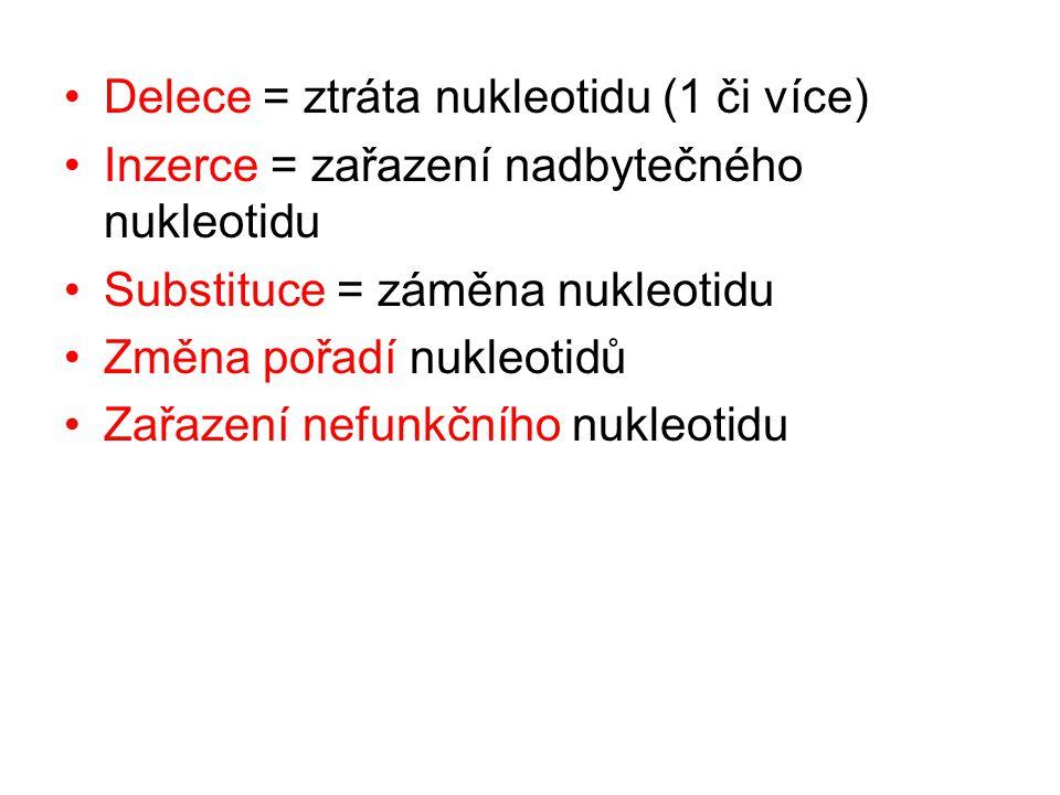 Delece = ztráta nukleotidu (1 či více) Inzerce = zařazení nadbytečného nukleotidu Substituce = záměna nukleotidu Změna pořadí nukleotidů Zařazení nefu