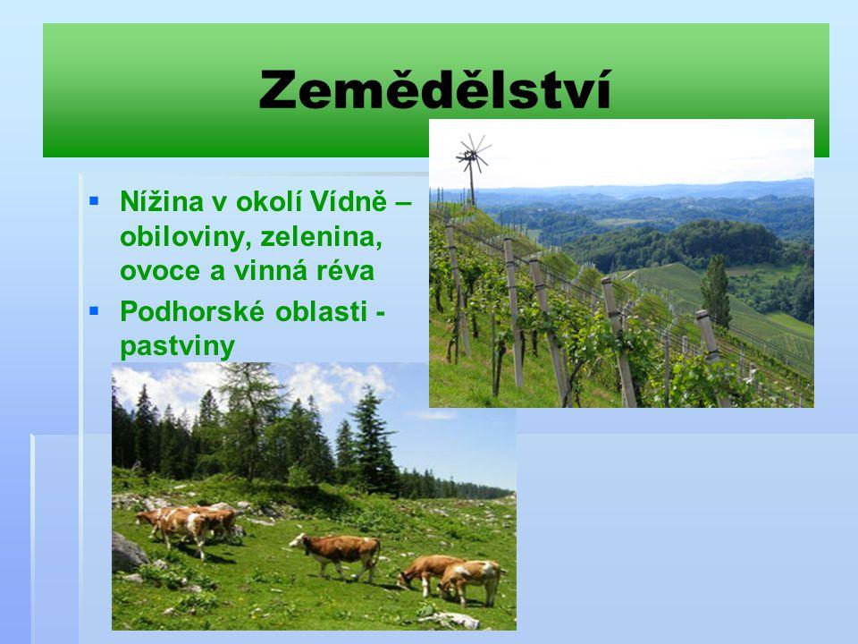 Zemědělství   Nížina v okolí Vídně – obiloviny, zelenina, ovoce a vinná réva   Podhorské oblasti - pastviny