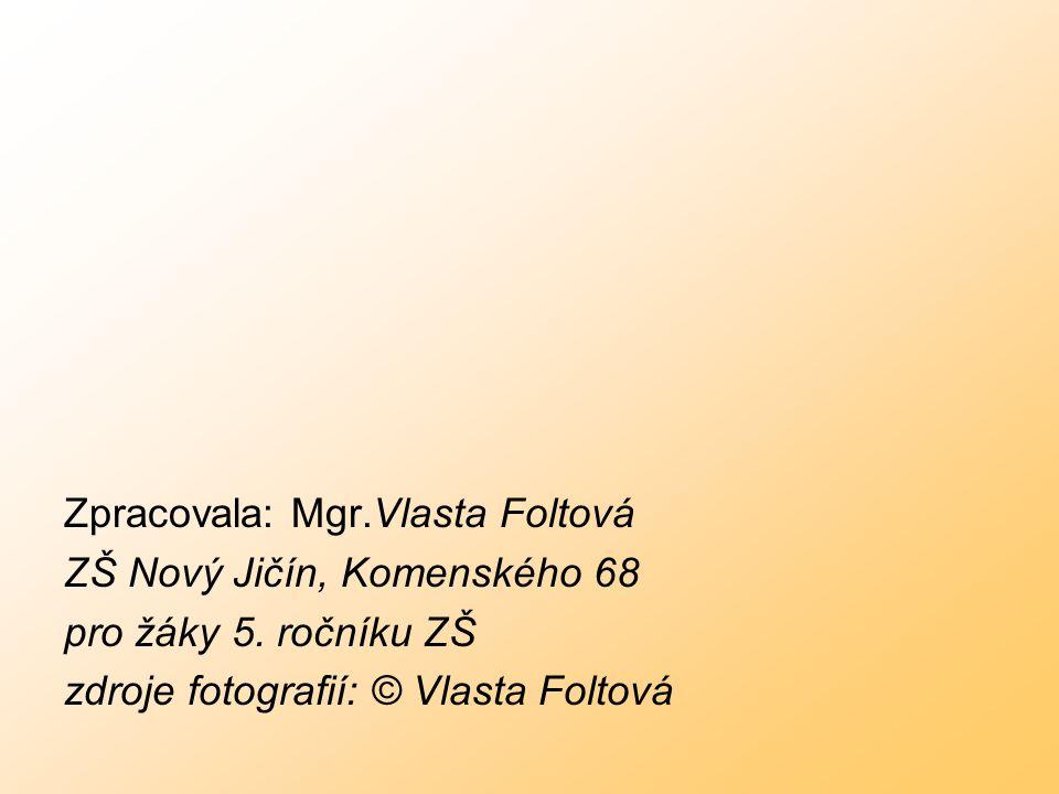 Zpracovala: Mgr.Vlasta Foltová ZŠ Nový Jičín, Komenského 68 pro žáky 5. ročníku ZŠ zdroje fotografií: © Vlasta Foltová