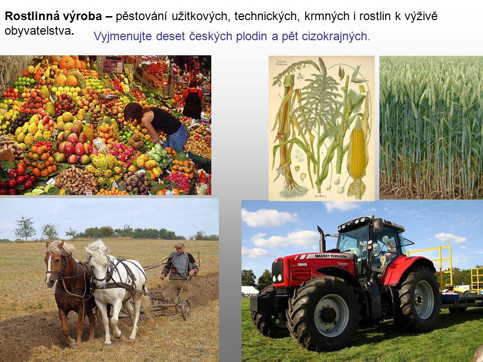 Rostlinná výroba – pěstování užitkových, technických, krmných i rostlin k výživě obyvatelstva. Vyjmenujte deset českých plodin a pět cizokrajných.