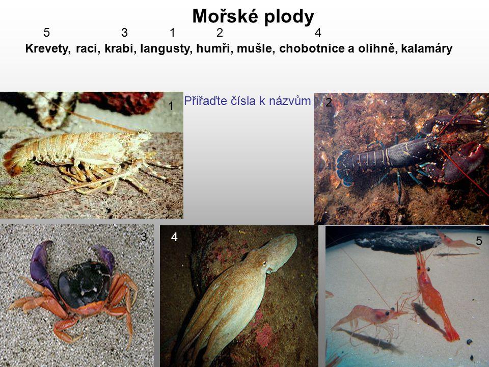 Krevety, raci, krabi, langusty, humři, mušle, chobotnice a olihně, kalamáry Mořské plody 1 2 34 5 5 3 1 2 4 Přiřaďte čísla k názvům