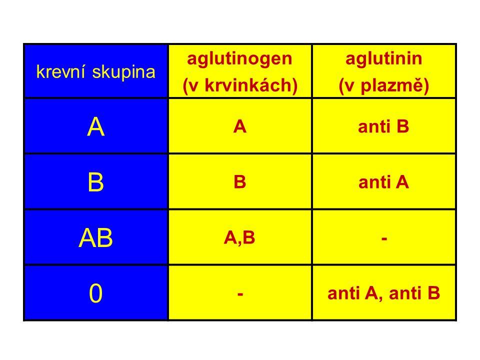 krevní skupina aglutinogen (v krvinkách) aglutinin (v plazmě) A Aanti B B Banti A AB A,B- 0 -anti A, anti B