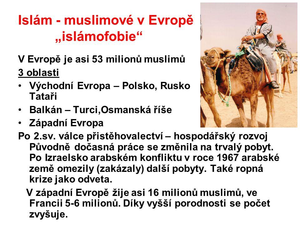 """Islám - muslimové v Evropě """"islámofobie"""" V Evropě je asi 53 milionů muslimů 3 oblasti Východní Evropa – Polsko, Rusko Tataři Balkán – Turci,Osmanská ř"""