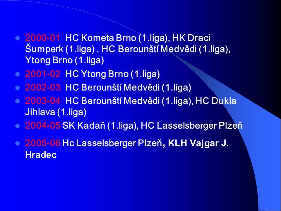 2000-01 HC Kometa Brno (1.liga), HK Draci Šumperk (1.liga), HC Berounští Medvědi (1.liga), Ytong Brno (1.liga) 2001-02 HC Ytong Brno (1.liga) 2002-03 HC Berounští Medvědi (1.liga) 2003-04 HC Berounští Medvědi (1.liga), HC Dukla Jihlava (1.liga) 2004-05 SK Kadaň (1.liga), HC Lasselsberger Plzeň 2005-06 Hc Lasselsberger Plzeň, KLH Vajgar J.