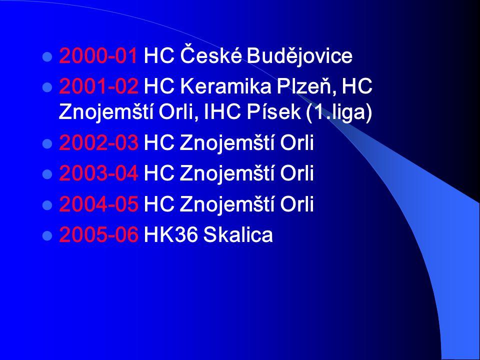 2000-01 HC České Budějovice 2001-02 HC Keramika Plzeň, HC Znojemští Orli, IHC Písek (1.liga) 2002-03 HC Znojemští Orli 2003-04 HC Znojemští Orli 2004-05 HC Znojemští Orli 2005-06 HK36 Skalica
