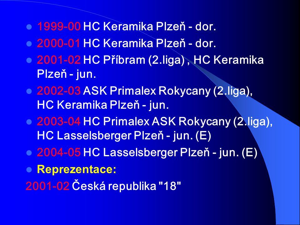 1999-00 HC Keramika Plzeň - dor. 2000-01 HC Keramika Plzeň - dor. 2001-02 HC Příbram (2.liga), HC Keramika Plzeň - jun. 2002-03 ASK Primalex Rokycany