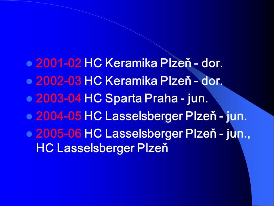 2001-02 HC Keramika Plzeň - dor. 2002-03 HC Keramika Plzeň - dor. 2003-04 HC Sparta Praha - jun. 2004-05 HC Lasselsberger Plzeň - jun. 2005-06 HC Lass