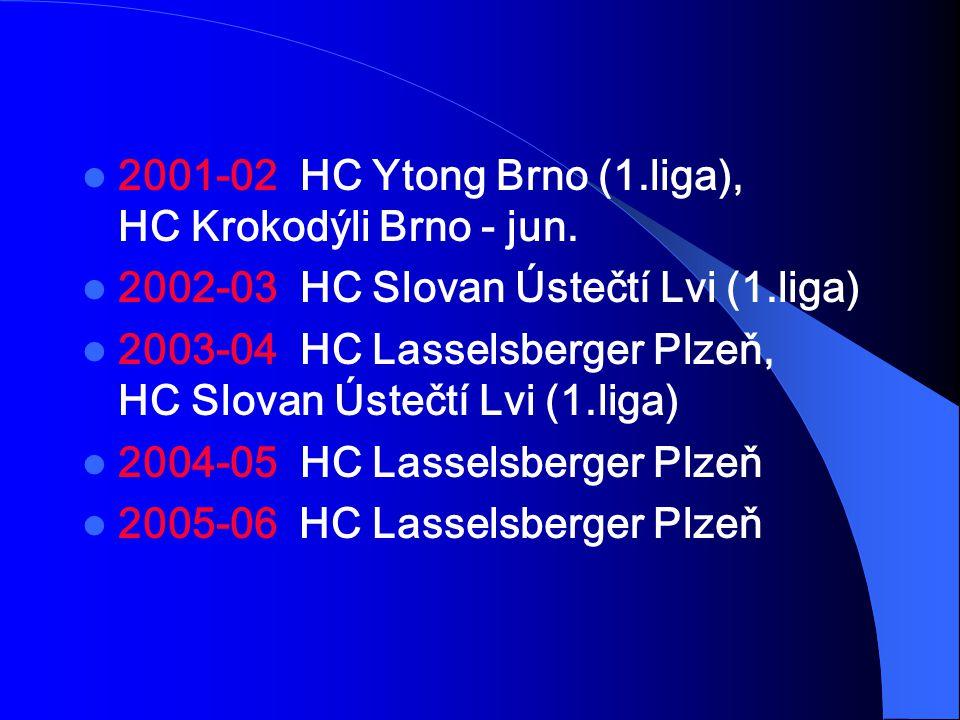 2001-02 HC Ytong Brno (1.liga), HC Krokodýli Brno - jun. 2002-03 HC Slovan Ústečtí Lvi (1.liga) 2003-04 HC Lasselsberger Plzeň, HC Slovan Ústečtí Lvi