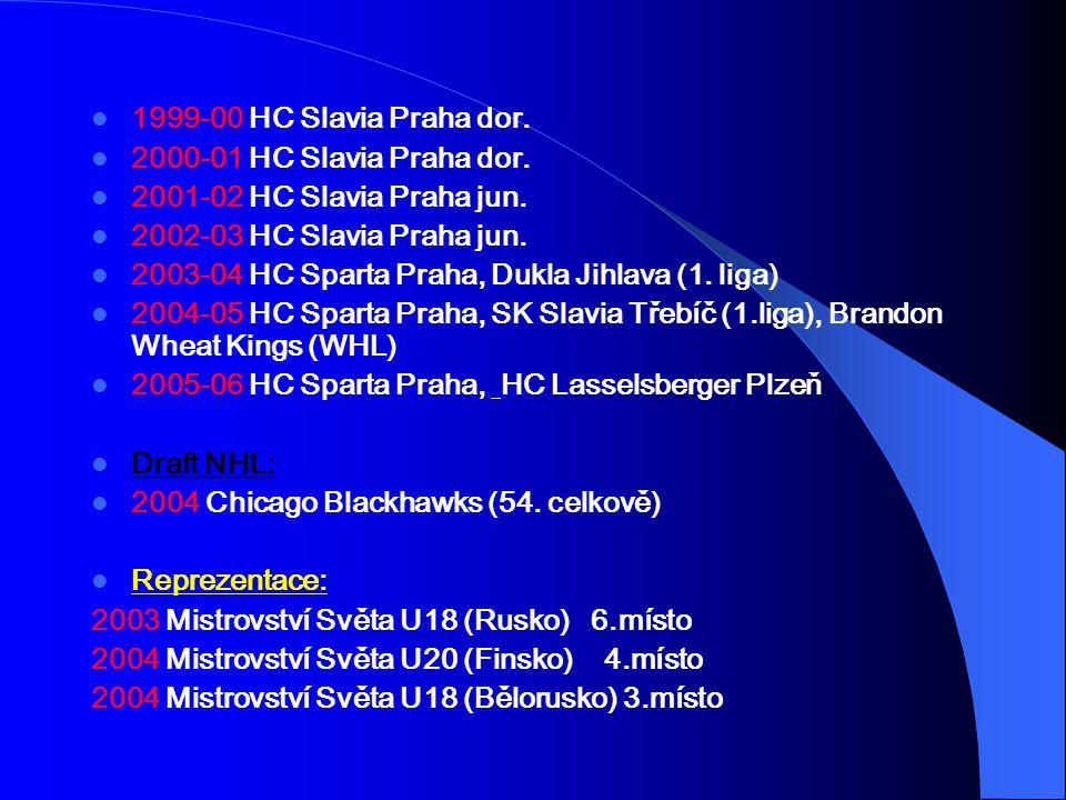 1999-00 HC Slavia Praha dor. 2000-01 HC Slavia Praha dor. 2001-02 HC Slavia Praha jun. 2002-03 HC Slavia Praha jun. 2003-04 HC Sparta Praha, Dukla Jih