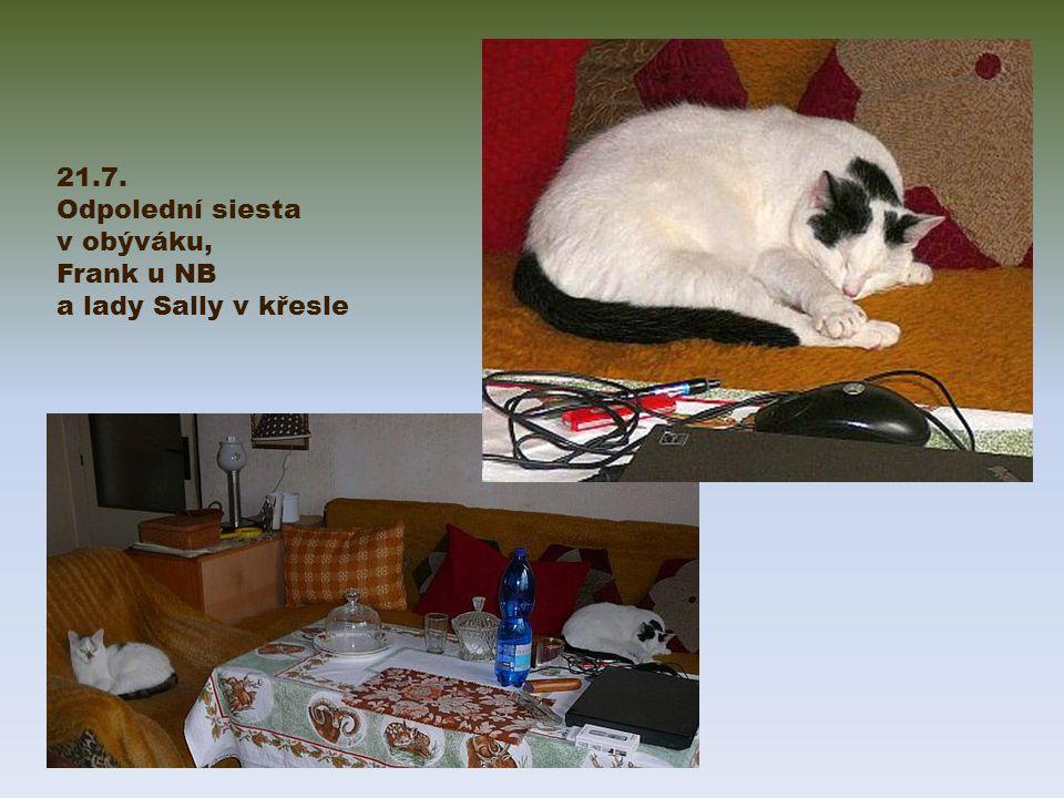 21.7. Odpolední siesta v obýváku, Frank u NB a lady Sally v křesle