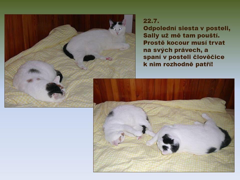 22.7. Odpolední siesta v posteli, Sally už mě tam pouští.
