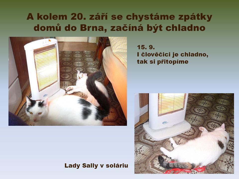 A kolem 20. září se chystáme zpátky domů do Brna, začíná být chladno Lady Sally v soláriu 15.