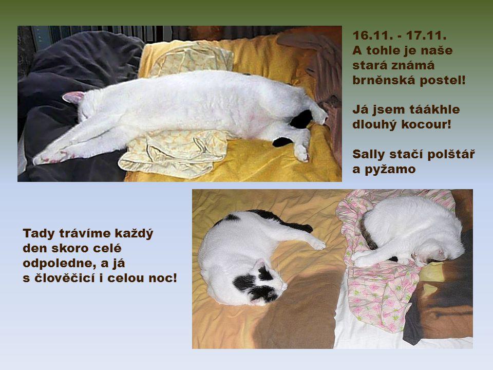 16.11. - 17.11. A tohle je naše stará známá brněnská postel.