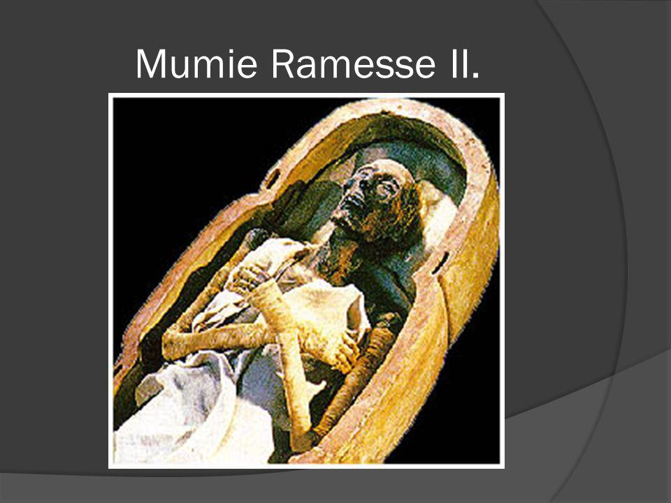Mumie Ramesse II.