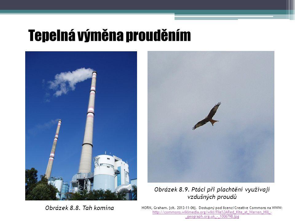Obrázek 8.9. Ptáci při plachtění využívají vzdušných proudů HORN, Graham.  cit. 2013-11-06 . Dostupný pod licencí Creative Commons na WWW: http://co