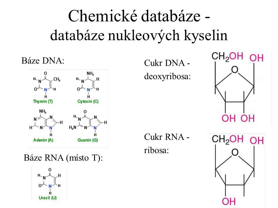 Chemické databáze - databáze nukleových kyselin Báze DNA: Cukr DNA - deoxyribosa: Báze RNA (místo T): Cukr RNA - ribosa:
