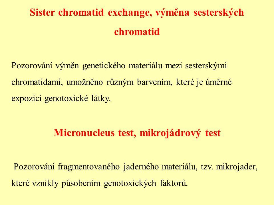 Sister chromatid exchange, výměna sesterských chromatid Pozorování výměn genetického materiálu mezi sesterskými chromatidami, umožněno různým barvením