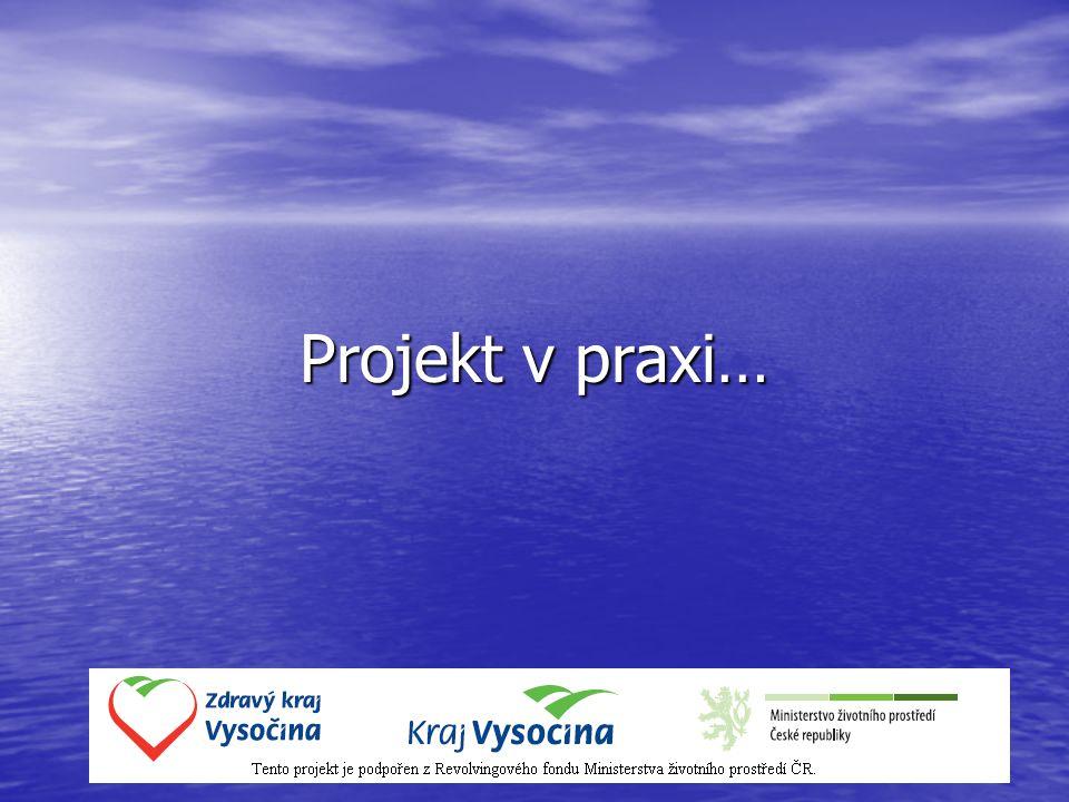 Popis projektu Logická linie C Í L – V Ý S T U P – A K T I V I T A Cíl projektu vystihuje změnu stavu, které bude projektem dosaženo.