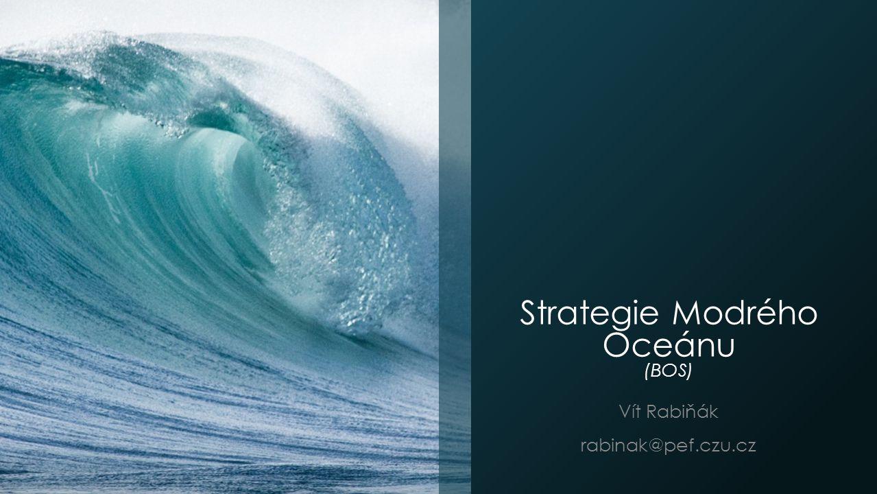 Vytvoření vlastního Obrazu Strategie a ERRC gridu VS.