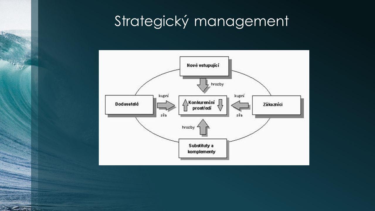 Vizualizace strategie Celkový obraz Vizuální probuzení Vizuální prozkoumání Vizuální přehlídka strat.