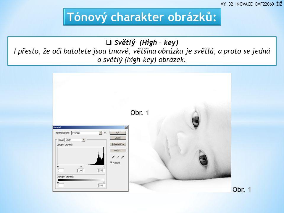 VY_32_INOVACE_OVF22060_ŽIŽ  Světlý (High – key) I přesto, že oči batolete jsou tmavé, většina obrázku je světlá, a proto se jedná o světlý (high-key) obrázek.